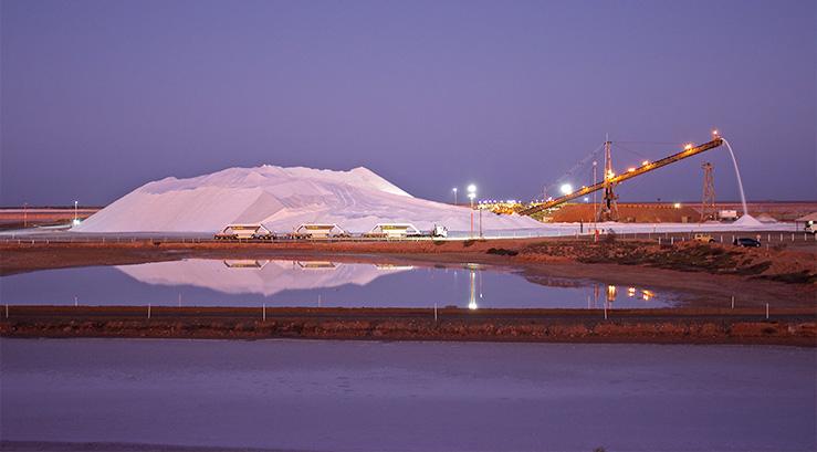 Dampier-Salt-Story